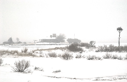 Photograph of Taylor's Island in Snow by John Picker